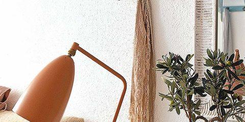 Room, Interior design, Tan, Interior design, Flowerpot, Houseplant, Home accessories, Throw pillow, Still life photography, Pillow,