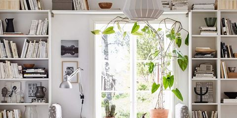 Room, Interior design, Green, Home, Living room, Furniture, Shelf, Floor, Wall, White,