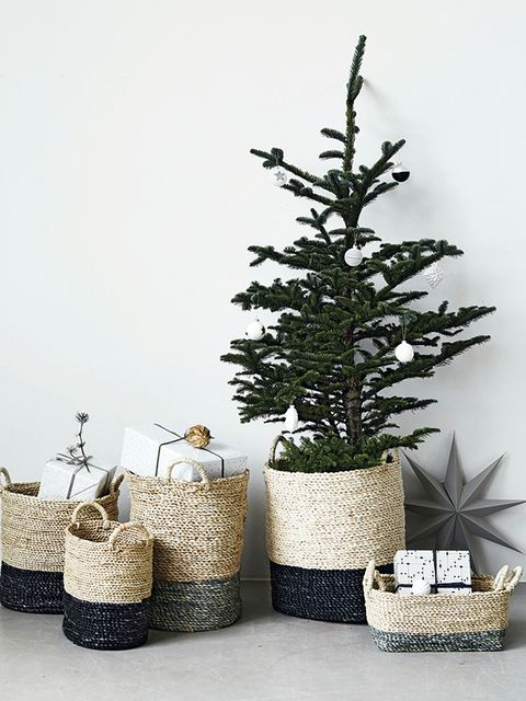 Branch, Twig, Interior design, Home accessories, Still life photography, Basket, Wicker, Natural material, Evergreen, Pine family,