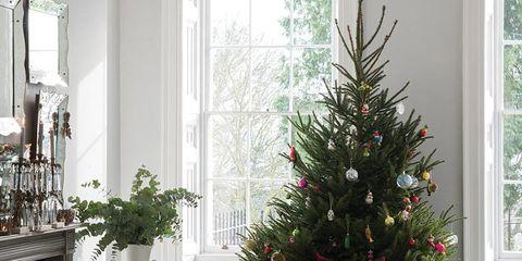Interior design, Room, Furniture, Interior design, Home, Christmas tree, Fixture, Christmas decoration, Holiday, Ornament,