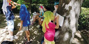 Campamento verano Jardín Botánico de madrid