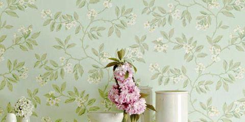 Wall, Serveware, Interior design, Porcelain, Petal, Artifact, Pottery, Vase, Wallpaper, Creative arts,