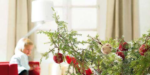 Red, Interior design, Interior design, Petal, Flower Arranging, Floristry, Floral design, Christmas, Present, Home accessories,