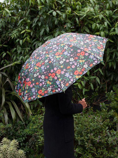 Textile, Leaf, Umbrella, Shrub, Terrestrial plant, Groundcover, Pattern, Perennial plant,