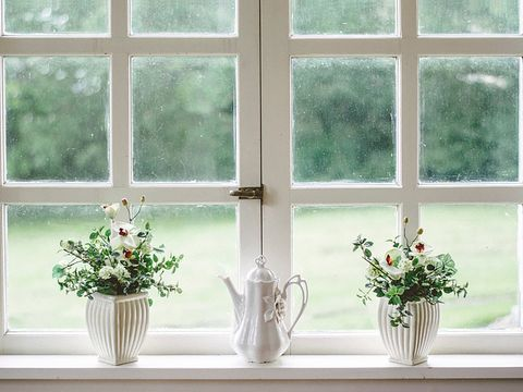 Window, Interior design, Room, Plant, Window treatment, Glass, Flowerpot, Architecture, Houseplant, Curtain,