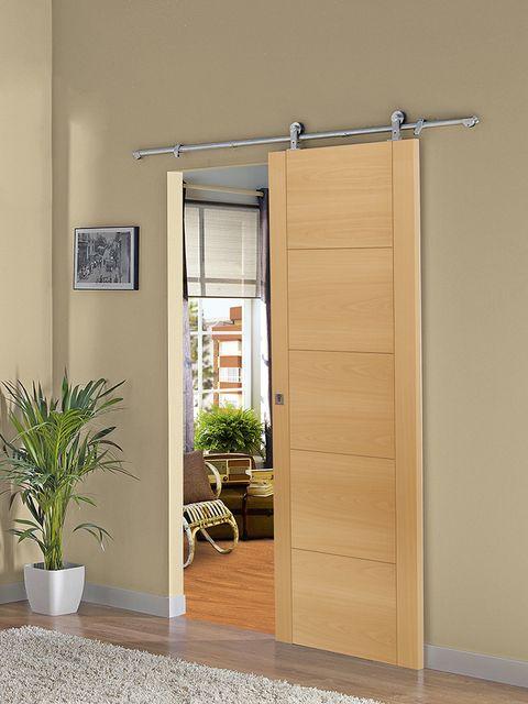 Flowerpot, Wood, Plant, Flooring, Floor, Wall, Fixture, Houseplant, Hardwood, Home door,