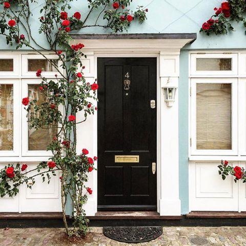 White, Red, Door, Property, Home door, Home, House, Facade, Building, Flower,