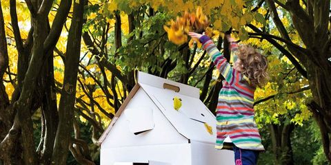 Leaf, Deciduous, Jeans, People in nature, Autumn, Twig, Spring, Playhouse, Play, Pet supply,