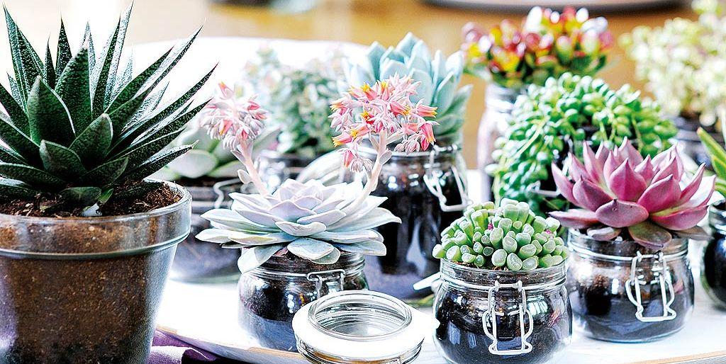 Recicla los frascos de cristal for Reciclar frascos de vidrio de cafe