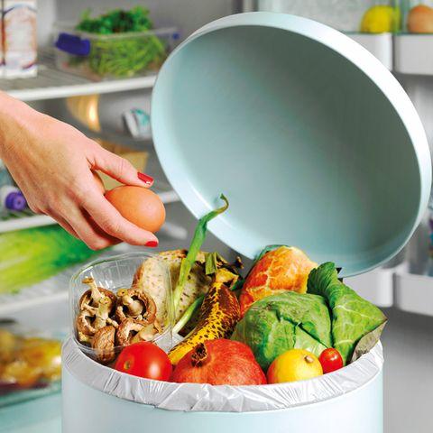 Food, Dish, Meal, Cuisine, Lunch, Ingredient, Vegetable, Produce, Vegan nutrition, Food group,