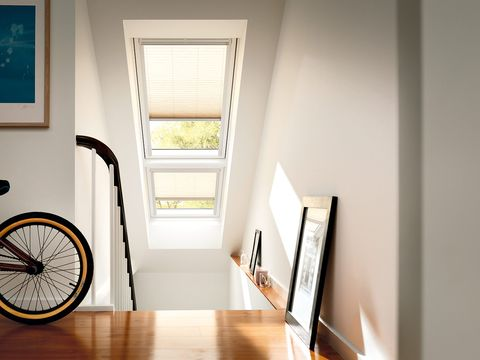 Bicycle tire, Bicycle wheel rim, Wood, Bicycle accessory, Room, Bicycle wheel, Interior design, Flooring, Hardwood, Bicycle,