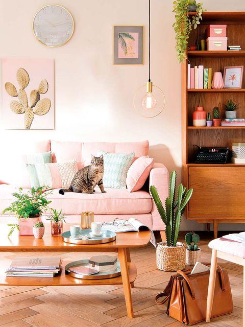 Room, Interior design, Home, Wall, Interior design, Furniture, Shelf, Living room, Table, Felidae,