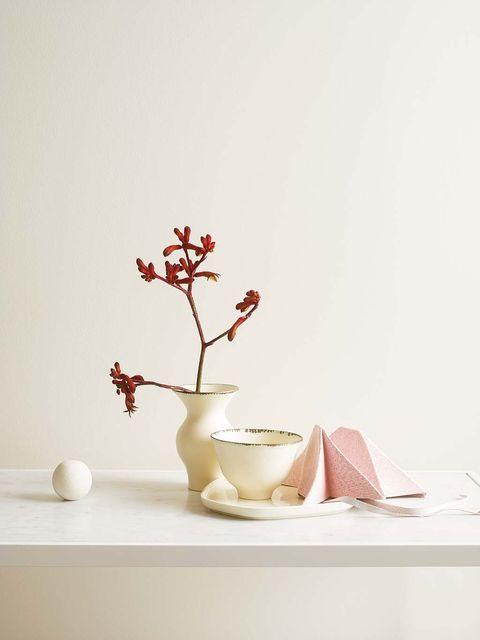 Still life photography, Branch, Ikebana, Twig, Still life, Tree, Plant, Flower, Room, Tableware,