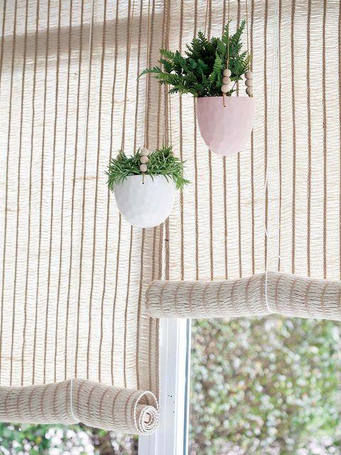 Curtain, Window treatment, Interior design, Textile, Window covering, Window, Plant, Room, Flowerpot, Herb,