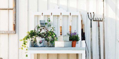 Tareas de jardinería que debes realizar en primavera