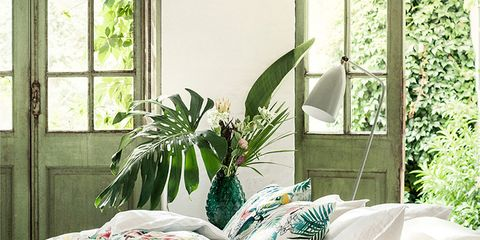 Green, Interior design, Room, Home, Living room, Wall, Couch, Pillow, Throw pillow, Cushion,