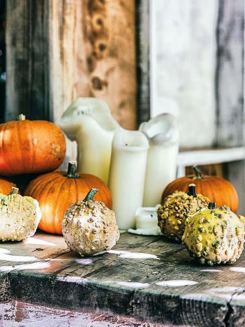 Pumpkin, Winter squash, Calabaza, Food, Vegetable, Cucurbita, Bread, Still life photography, Vegetarian food, Gourd,