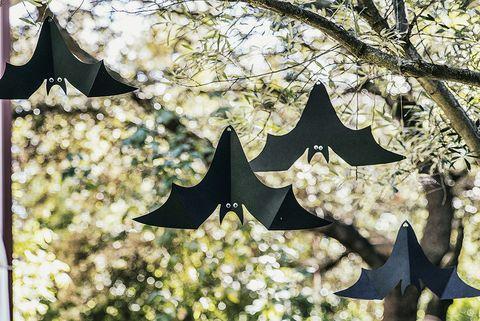 murciélagos colgados del árbol para halloween