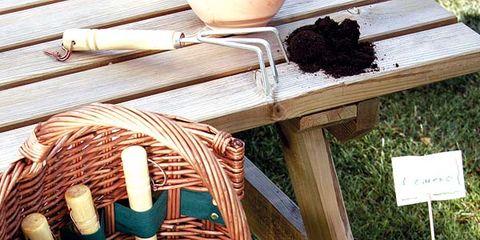 Ingredient, Herb, Basket, Wicker, Fines herbes, Storage basket, Natural material, Home accessories,