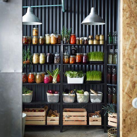 Shelving, Light fixture, Collection, Bottle, Shelf, Glass bottle, Home accessories, Produce, Whole food,