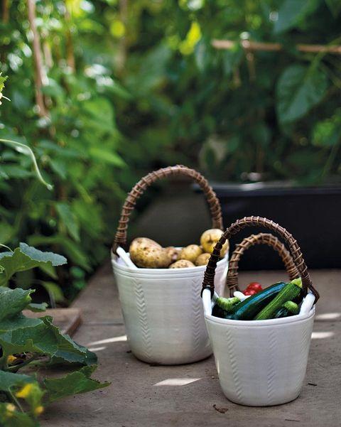 cestas para verduras de charlotte storrs stoneware