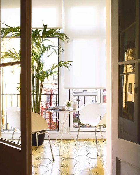 Interior design, Room, Floor, Fixture, Interior design, Houseplant, Shade, Daylighting, Tile, Transparent material,