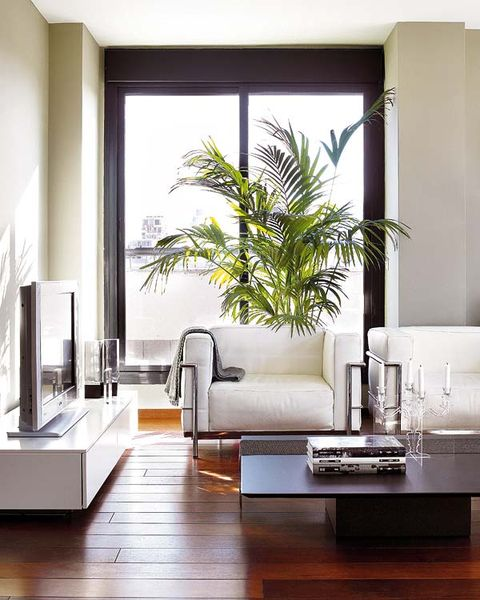 Interior design, Room, Wood, Floor, Wall, Living room, Couch, Furniture, Interior design, Flooring,