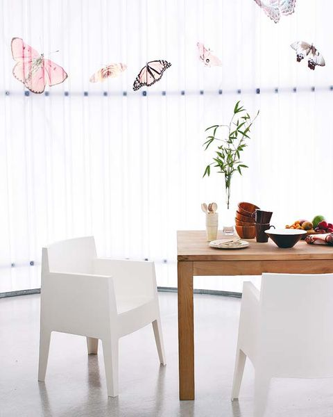 Wood, Room, Interior design, Insect, Invertebrate, Table, Furniture, Floor, Pollinator, Butterfly,