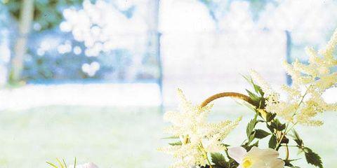 Flowerpot, Serveware, Flower, Bouquet, Dishware, Petal, Porcelain, Centrepiece, Interior design, Vase,