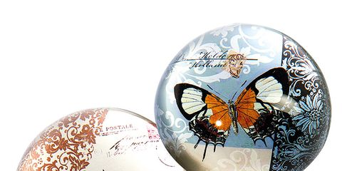 Insect, Pollinator, Invertebrate, Arthropod, Butterfly, Carmine, Moths and butterflies, Wing, Silver, Circle,