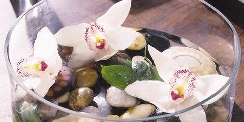 Centro de orquídeas en agua
