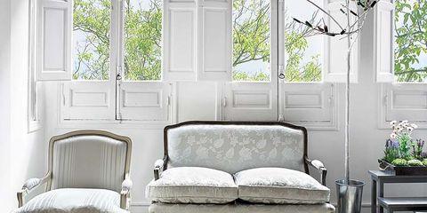 Wood, Room, Interior design, Furniture, Wall, Flowerpot, Fixture, Hardwood, Grey, Daylighting,