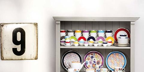 Shelving, Dishware, Carnivore, Shelf, Dog, Interior design, Home accessories, Dog breed, Picture frame, Collection,