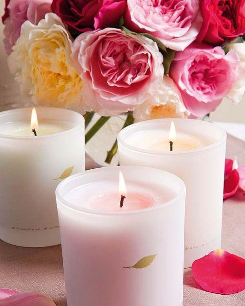 Lighting, Wax, Petal, White, Candle, Pink, Flame, Peach, Fire, Orange,