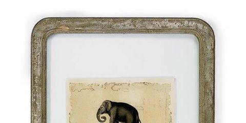 Terrestrial animal, Liver, Rectangle, Deer, Fawn, Wildlife, Antelope, Working animal, Painting, Drawing,
