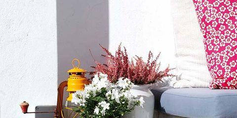 Glass, Bottle, Glass bottle, Teal, Artifact, Drinkware, Still life photography, Vase, Flowerpot, Barware,