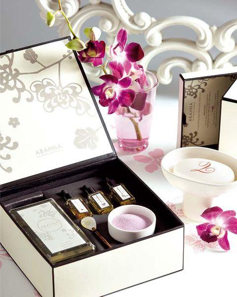 Petal, Pink, Purple, Lavender, Violet, Magenta, Cosmetics, Lipstick, Drinkware, Cup,
