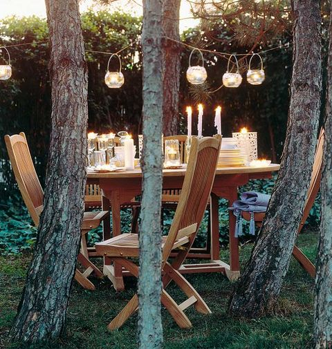 Wood, Branch, Lighting, Tree, Furniture, Outdoor furniture, Hardwood, Outdoor table, Trunk, Light fixture,