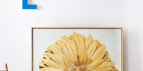 Room, Interior design, Wall, Furniture, Interior design, Flooring, Flowerpot, Hardwood, Creative arts, Home,