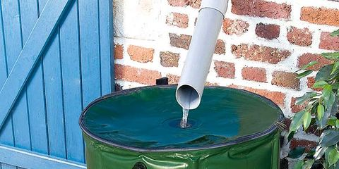 Blue, Green, Teal, Turquoise, Aqua, Majorelle blue, Azure, Flowerpot, Gas, Electric blue,