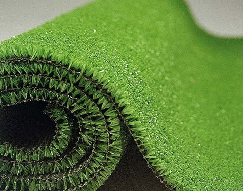 Green, Colorfulness, Close-up, Macro photography, Circle, Perennial plant, Annual plant, Spiral,
