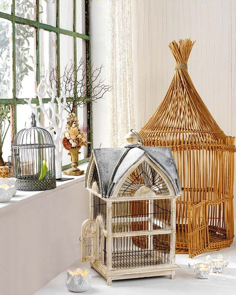 Cage, Interior design, Pet supply, Flowerpot, Interior design, Window treatment, Houseplant, Curtain, Transparent material, Wicker,