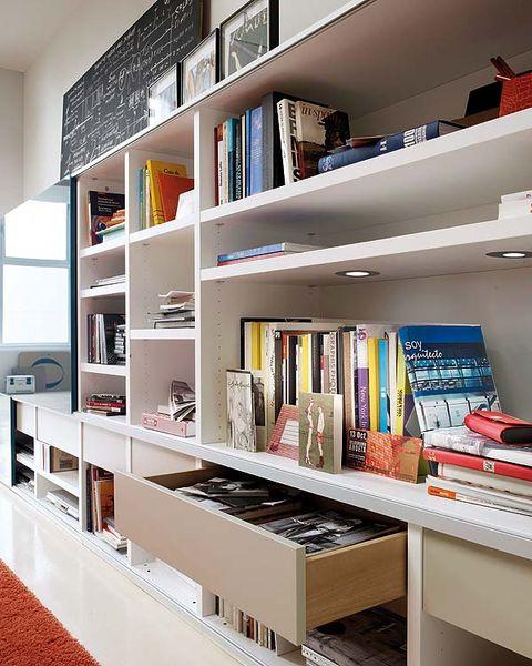 Room, Interior design, Shelf, Shelving, Publication, Furniture, Bookcase, Book, Collection, Interior design,