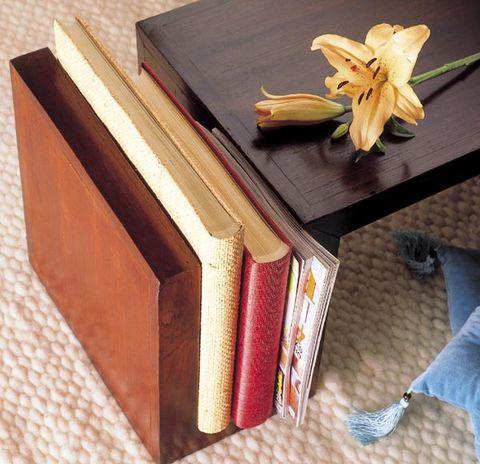 Brown, Shoe, Wood, Jeans, Denim, Petal, Tan, Sneakers, Wood stain, Book,