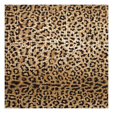 Brown, Pattern, Textile, Tan, Beige, Fawn, Rug, Close-up, Design, Visual arts,