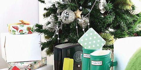 Green, Boot, Riding boot, Rain boot, Carmine, Costume accessory, Interior design, Christmas decoration, Flower Arranging, Cowboy boot,
