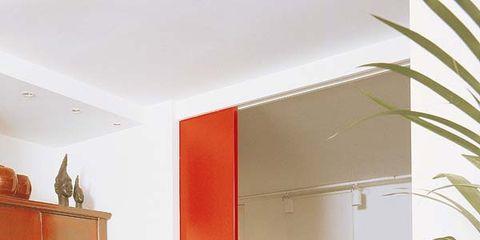 Floor, Flooring, Room, Interior design, Wall, Orange, Fixture, Flowerpot, Hardwood, Interior design,