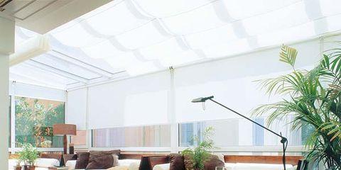 Wood, Floor, Interior design, Plant, Flooring, Room, Furniture, Hardwood, Couch, Flowerpot,