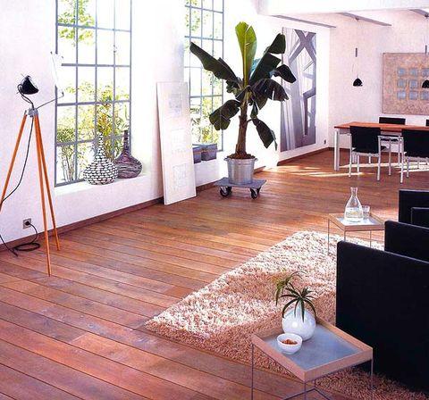 Wood, Floor, Flooring, Interior design, Flowerpot, Wood flooring, Hardwood, Laminate flooring, Fixture, Interior design,