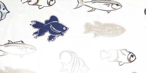 Organism, Illustration, Drawing, Fish, Fin, Sketch, Line art,